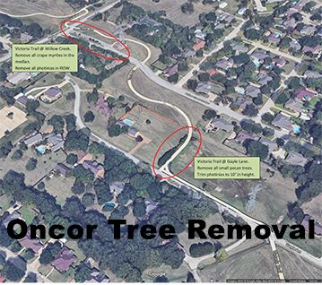 Oncor Tree Removal