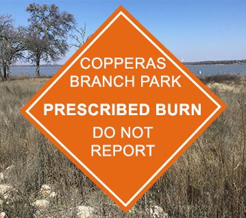 Copperas Branch Park Controlled Burn